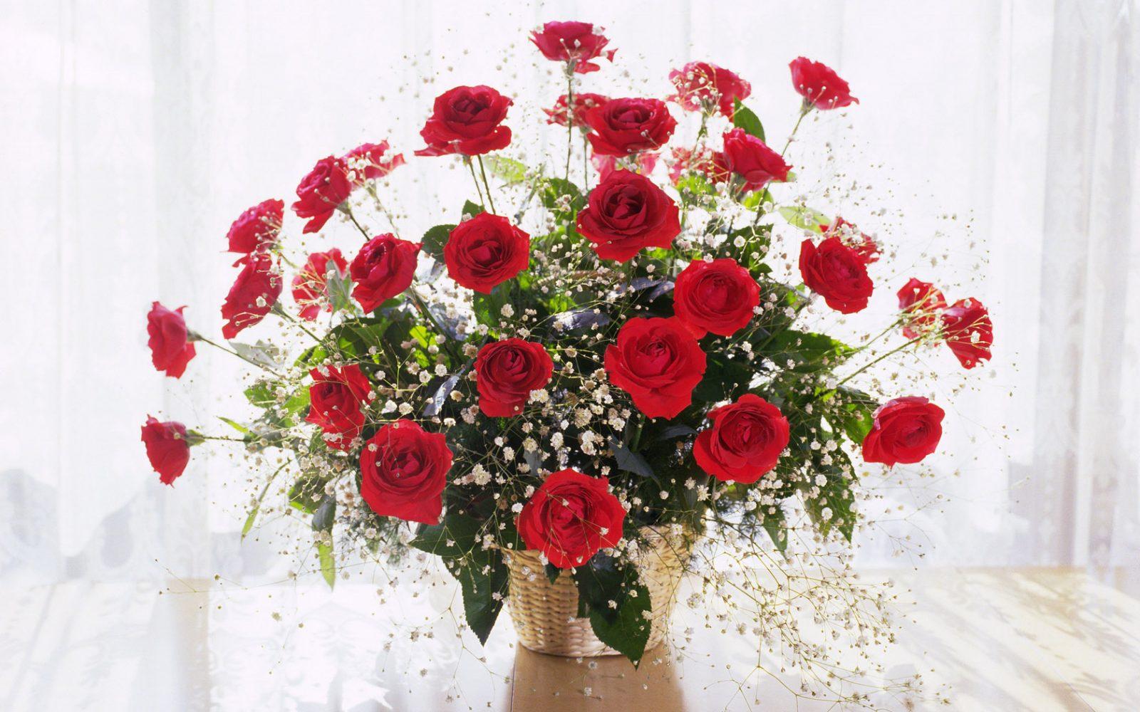 cuidados de los ramos de rosas - Imagenes De Ramos De Rosas
