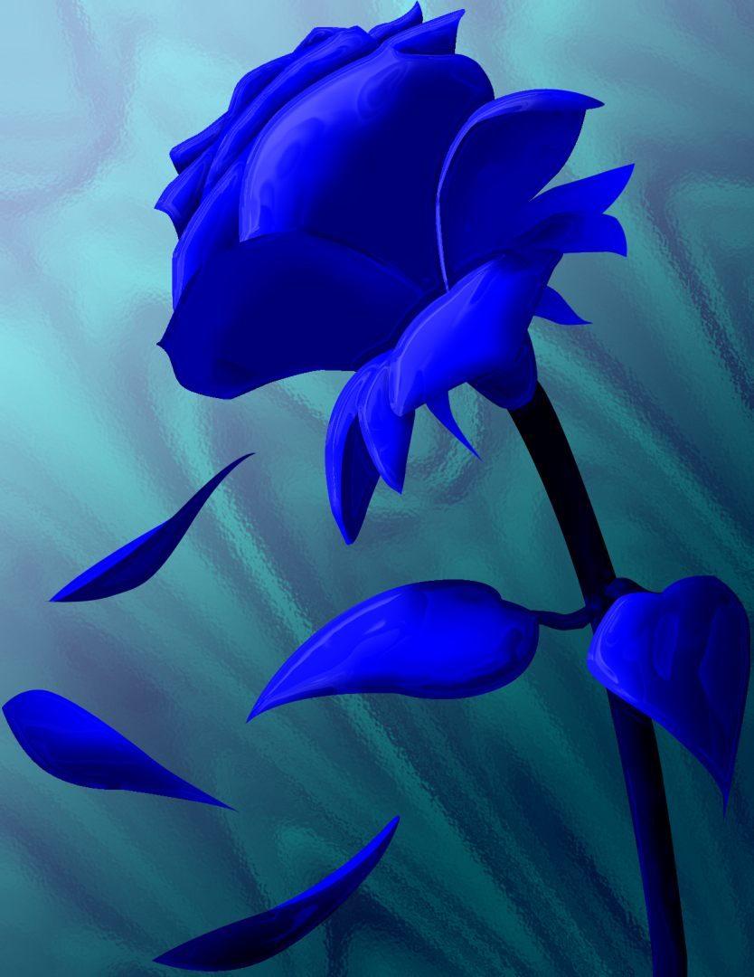 Dibujo de una rosa azul  Imgenes y fotos