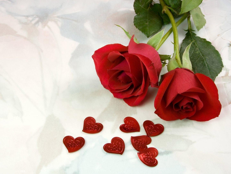 Fondo romántico con rosas rojas
