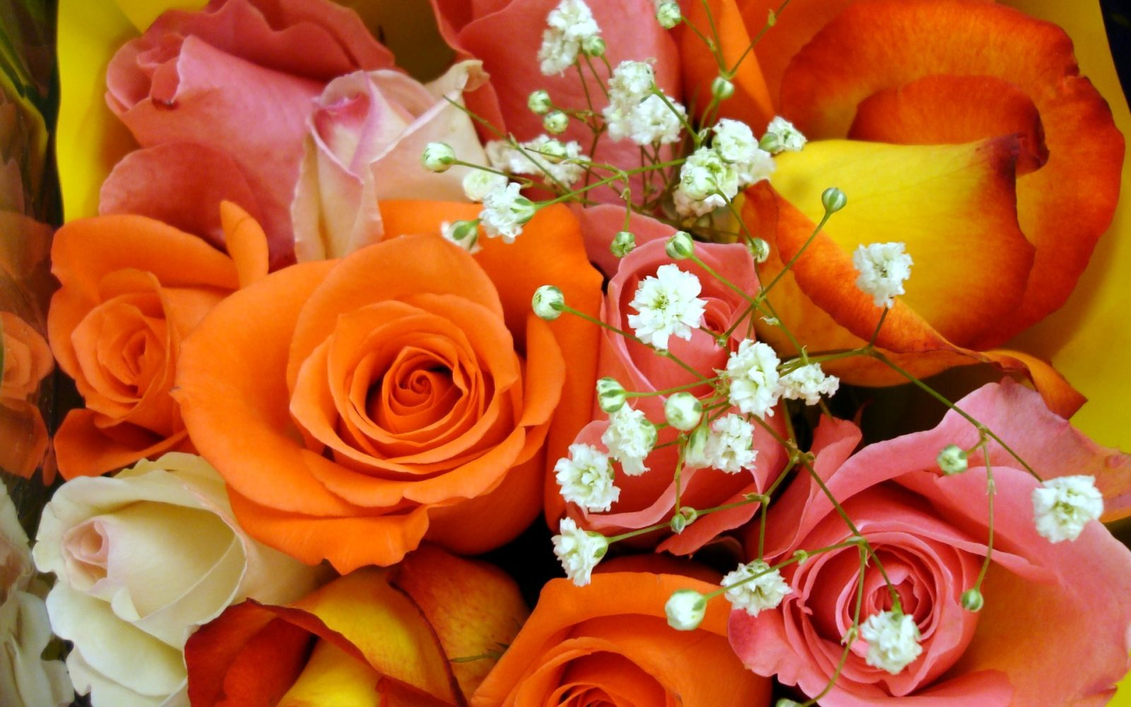 Fotos de ramo de rosas de colores 47