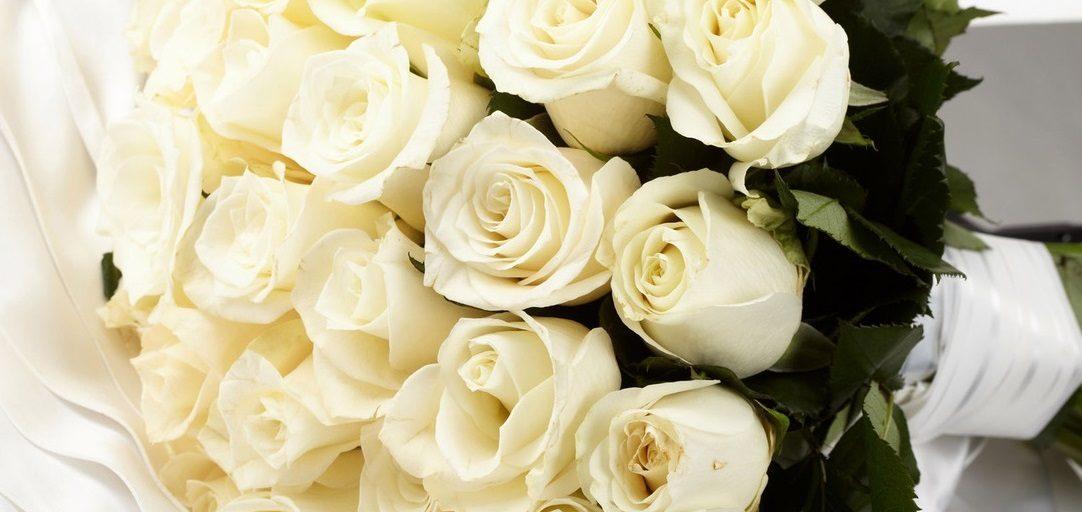 Rosas cuidados ramos tipos lenguaje y significado en - Significado rosas blancas ...